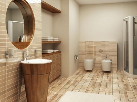 Bathroom renovations in Round Rock